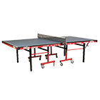 International Deluxe T.T. Table (1000DX)